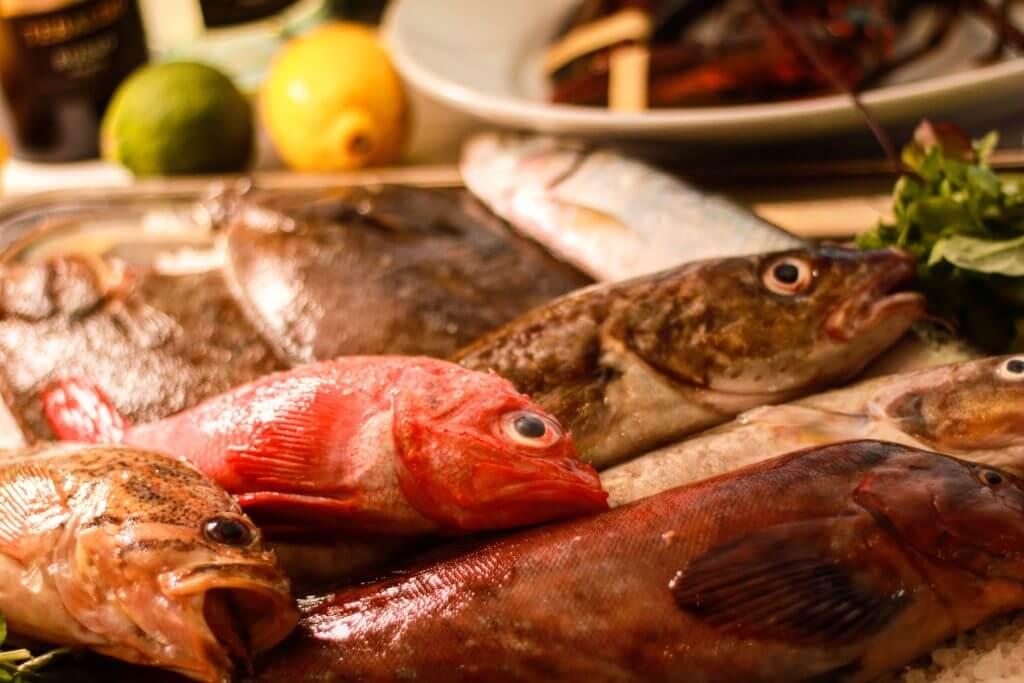 北海道根室漁師直送!鮮魚のアクアパッツァ
